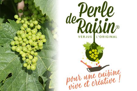 Logo Verjus Perle de raisin